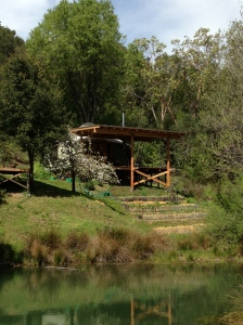 yurt pond shot